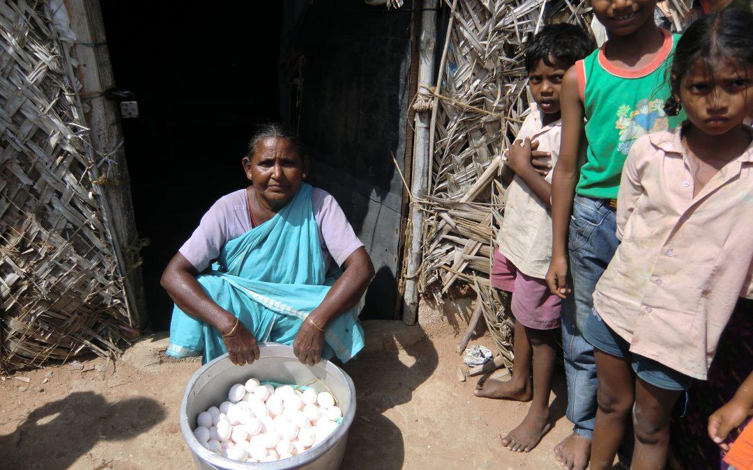 Microkredieten voor vrouwengroepen – Green India Trust